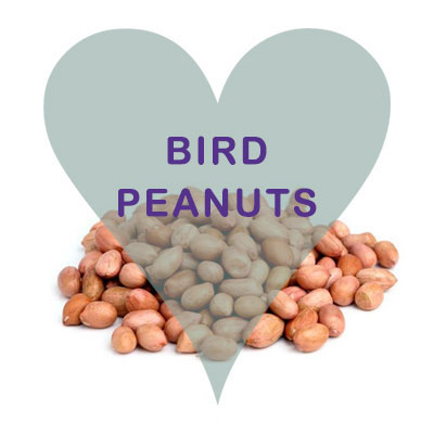 Scoops Bird Peanuts
