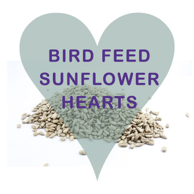 Scoops Sunflower Hearts Bird Feed