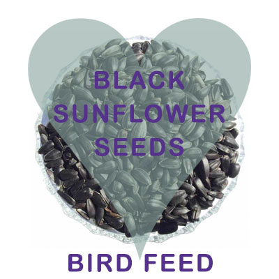 Black Sunflower Seeds Bird Feed