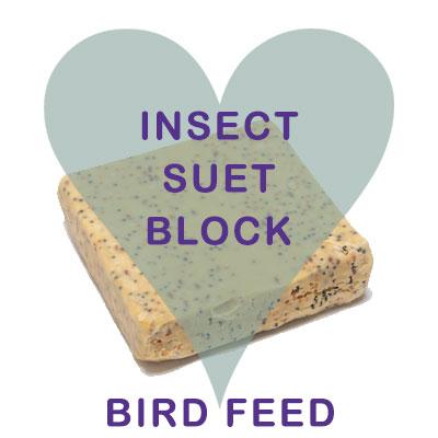 Scoops Insect Suet Block Bird Food
