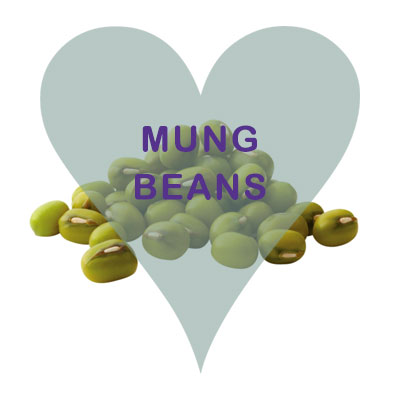 Scoops Mung Beans