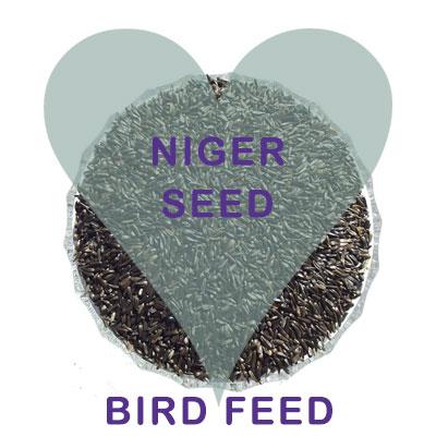 Scoops Niger Seeds Bird Food