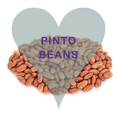 Scoops Pinto Beans