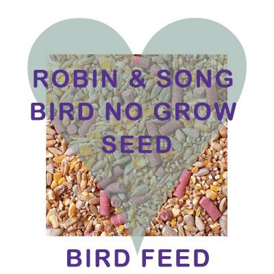Robin Song bird no grow seed bird food