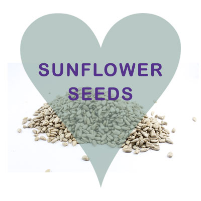 Scoops Sunflower Seeds