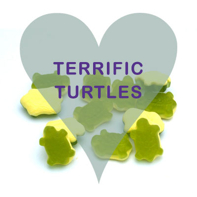 Terrific turtles pick and mix